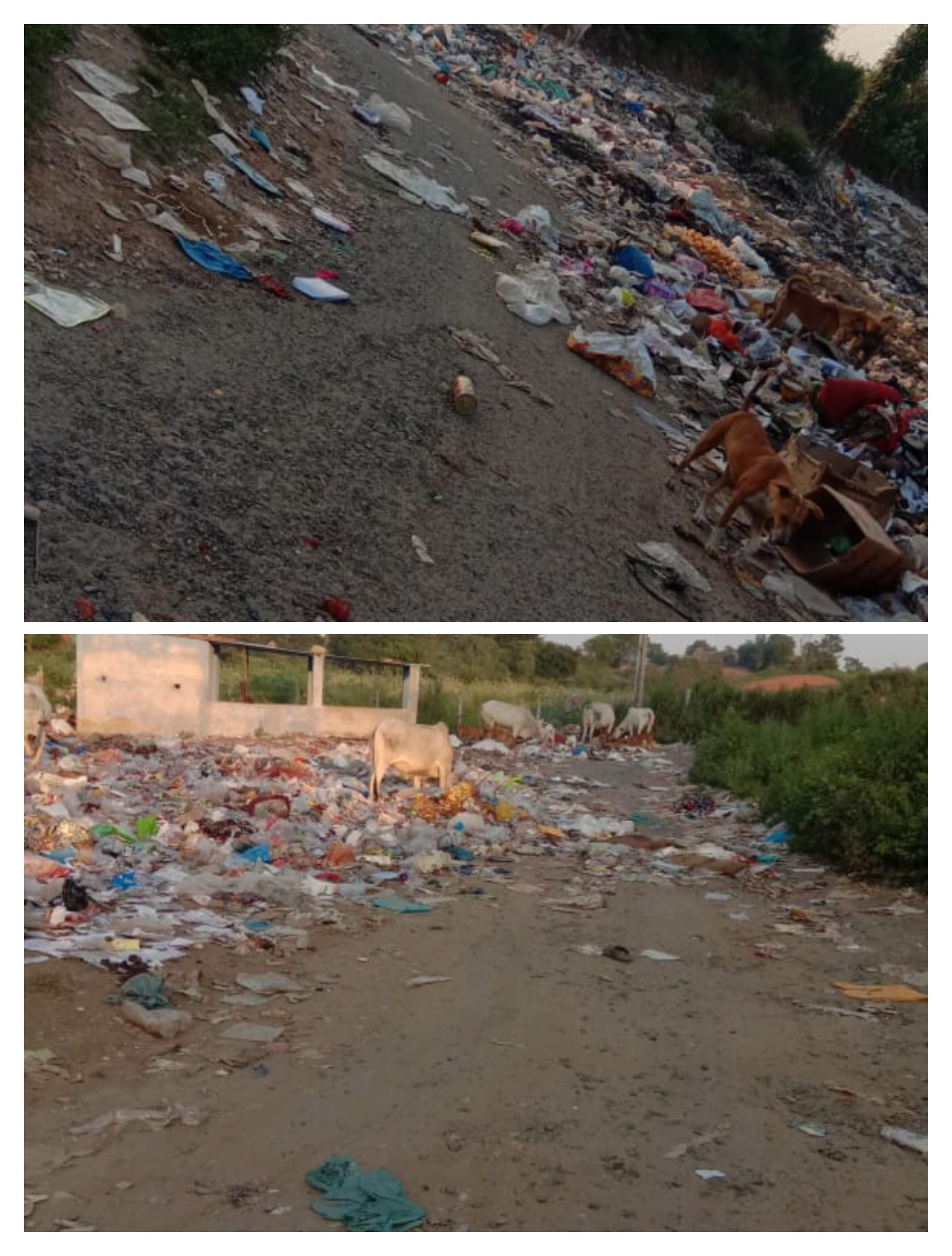 ફતેપુરામાં જાહેરમાં પ્લાસ્ટિકની થેલીઓ અને ગંદકી કચરો ફેંકવામાં આવતા રોગચાળો ફાટી નીકળવાની સંભાવના