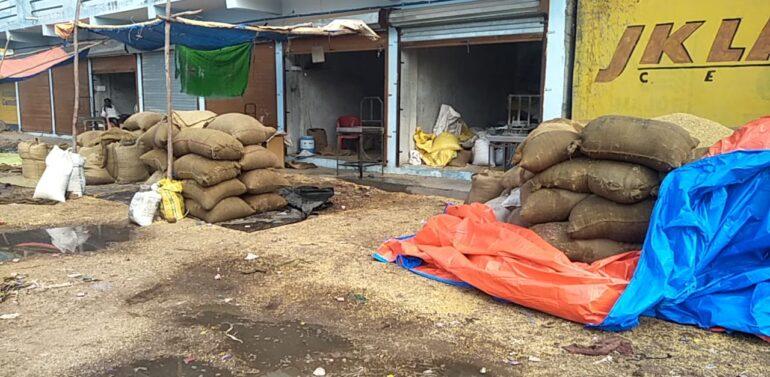 માર્કેટયાર્ડમાં ગોડાઉનના અભાવે ખુલ્લામાં પડેલો અનાજનો જથ્થો કમોસમી માવઠામાં પલળતા ઈટોના ભઠ્ઠાના,અનાજના વેપારીઓ-ખેડૂતોને લાખો રૂપિયાનું નુકશાન: વાતાવરણમાં ઠંડક પ્રસરી