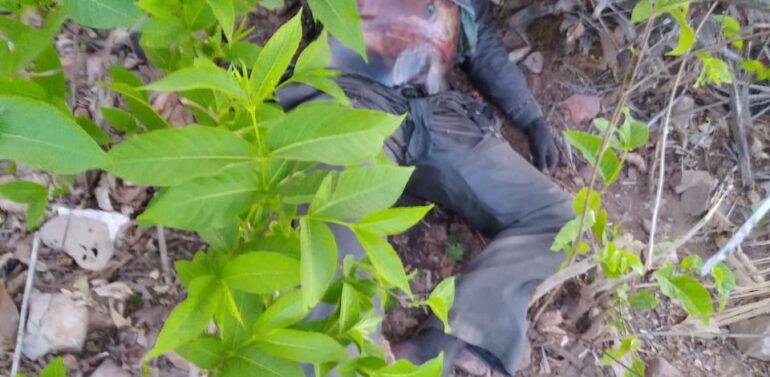 ફતેપુરાના ડુંગર ગામના જંગલમાંથી લાશ મળી આવતા ચકચાર:પોલિસ તપાસમાં જોતરાઈ