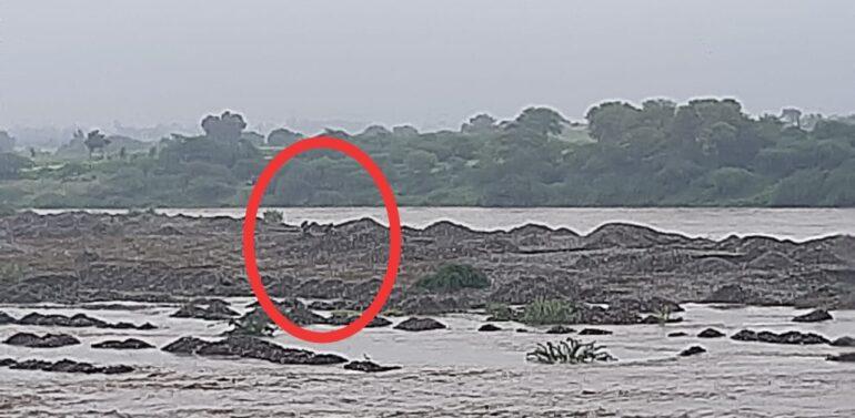 ઝાલોદ નજીક ગુજરાત રાજસ્થાન બોર્ડર નજીક અનાસ નદીના ધસમસતા પ્રવાહમાં છ યુવકો તણાયા: એકનું મોત:ચાર લાપતા: એકનો આબાદ બચાવ થયો