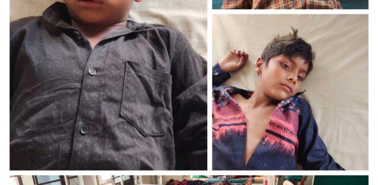 ગરબાડા તાલુકાના છરછોડા ગામે ખેતરમાં કામ કરતા પરિવાર પર મધમાખીના ઝૂંડે હુમલો કરતા 60 વર્ષીય વૃદ્ધનું મોત:અન્ય ત્રણ બાળકો ઈજાગ્રસ્ત થતાં દવાખાને ખસેડાયા