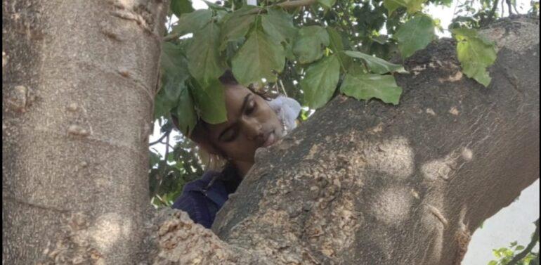 દાહોદ બસ સ્ટેન્ડના વર્કશોપના પાછળ ઝાડ પર લટકતી હાલતમાં યુવતીની લાશ મળી આવી: હત્યા કે આત્મહત્યા? પોલીસ તપાસમાં જોતરાઇ