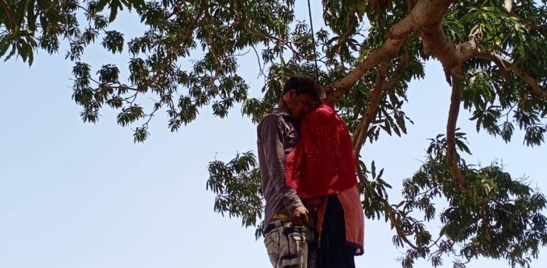 મધ્યપ્રદેશના થાંદલા નજીક સેમલપાડામાં ઝાડ પર યુવક-યુવતીની લાશ લટકતી જોવા ચકચાર:યુવક દાહોદનો જયારે યુવતીની ઓળખ અંગે પોલિસ તપાસમાં જોતરાઈ