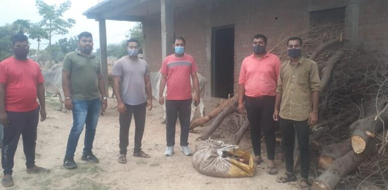 દાહોદના નગરાળામાં પાંચ મુંગા પશુઓને બચાવાયા, પોલીસને જોઇ કતલ કરનાર ભાગ્યો